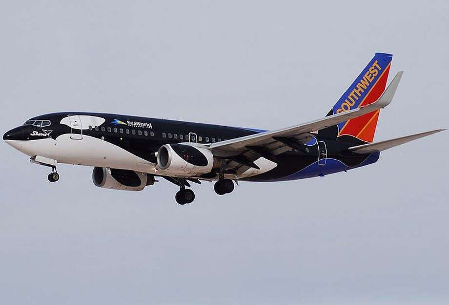 If you're from the Southwest or find yourself flying a lot, you might remember this Shamu-painted plane from 1988.