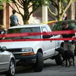 A bomb-sniffing dog searches a suspicious vehicle after a shooting at Seattle Pacific University on Thursday, June 5, 2014.