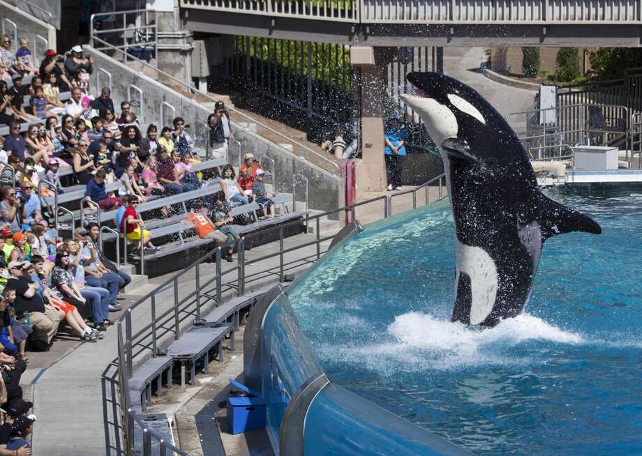 SeaWorld Market cap: $2.78 billion Photo: MIKE BLAKE, Reuters