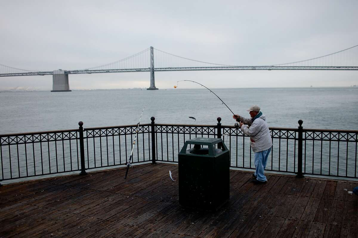 A fishermen pulls in a catch at Pier 7 in San Francisco, Calif. on Friday morning, June 6, 2014. Voters approved a ballot measure on Tuesday, June 3 to give voters a say in development along a 7 1/2-mile stretch of the waterfront.