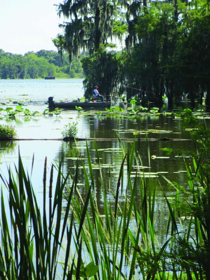 A fisherman casts his line in spot not far from the shore of Lake Martin. Photo: Frank Bertling, For The Express-News