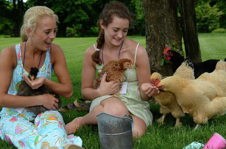 Brighid Kelley and Katie Murphy play with the chickens at this classic Oenoke Ridge Road home during the New Canaan Nature Center's Secret Gardens Tour, Friday, June 6, 2014. Photo: Jeanna Petersen Shepard, Freelance Photo / New Canaan News freelance