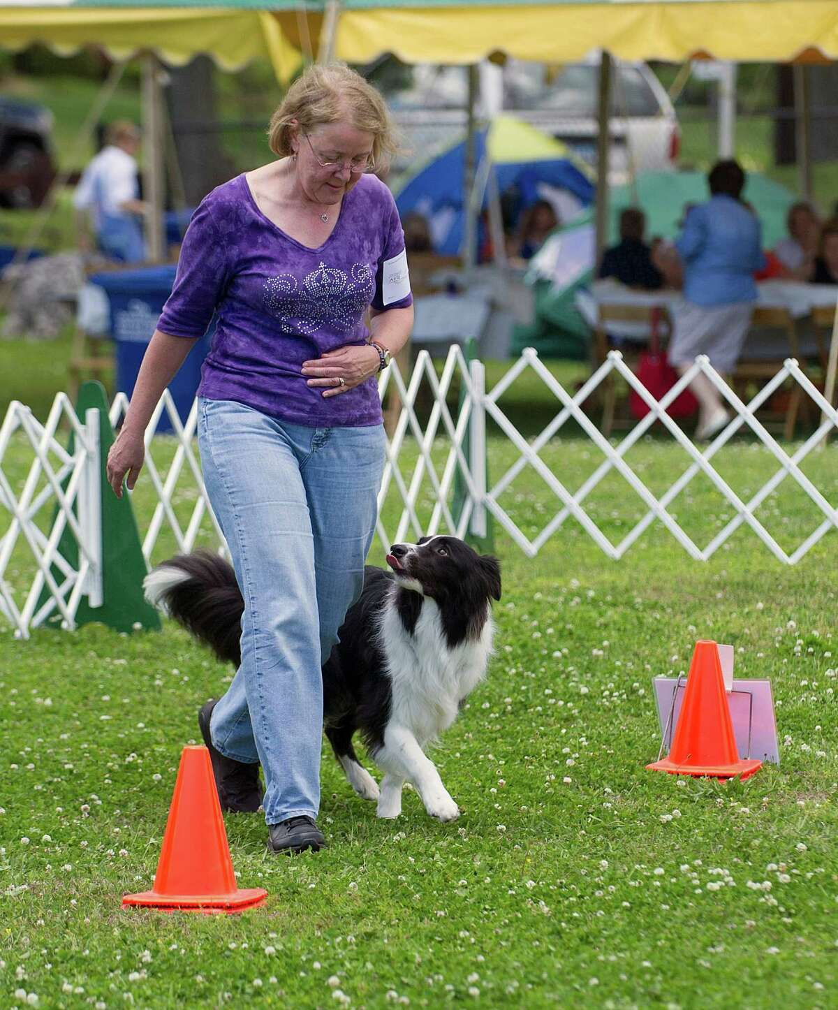 Sue Deilus of Newtown leads her border collie, Shamus, during the Rally Excellent obedience competition during the Greenwich Kennel Club's All-Breed Dog Show at Calf Pasture Beach in Norwalk, Conn., on Saturday, June 7, 2014. Deilus and Shamus earned a perfect score.