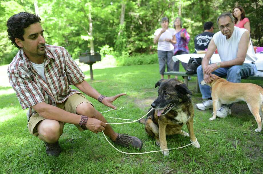 Dog trainer Eddie Simon tells Lexi, an 11-year-old mixed dog, to stay during Lexi's party at Carlson's Grove in New Milford, Conn. Saturday, June 7, 2014.  Local residents held a party for Lexi, 11, who had run away for 42 days before being caught.  The neighborhood worked together using motion-sensing cameras and traps to help catch the dog and bring her home. Photo: Tyler Sizemore / The News-Times