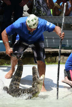An alligator snaps at Sal Cavazos as he pulls it out of a swimming pool during the first event of Saturday's tournament at Gator Country. The 2014 Gator Rescue Tournament was held at Gator Country on Saturday. Photo taken Saturday 6/7/14 Jake Daniels/@JakeD_in_SETX Photo: Jake Daniels / ©2014 The Beaumont Enterprise/Jake Daniels