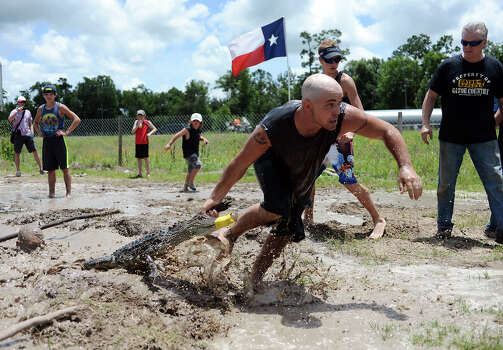 Jason Boudoin pulls an alligator from the waters of a muddy canal during the second event of Saturday's Gator Rescue Tournament. The 2014 Gator Rescue Tournament was held at Gator Country on Saturday. Photo taken Saturday 6/7/14 Jake Daniels/@JakeD_in_SETX Photo: Jake Daniels / ©2014 The Beaumont Enterprise/Jake Daniels