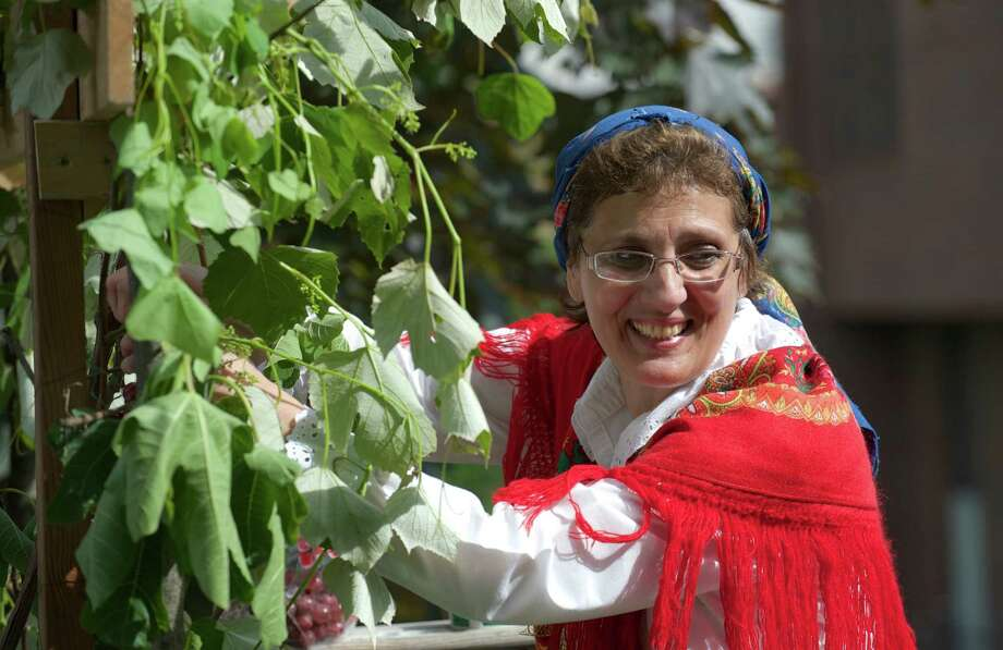 Isaura Alves, 55, of Danbury hangs grapes on a float display before the annual Portuguese Day Parade in Danbury, Conn, on Sunday, June 8, 2014. The float was from the Immaculate Heart of Mary Church in Danbury. Photo: H John Voorhees III / The News-Times Freelance