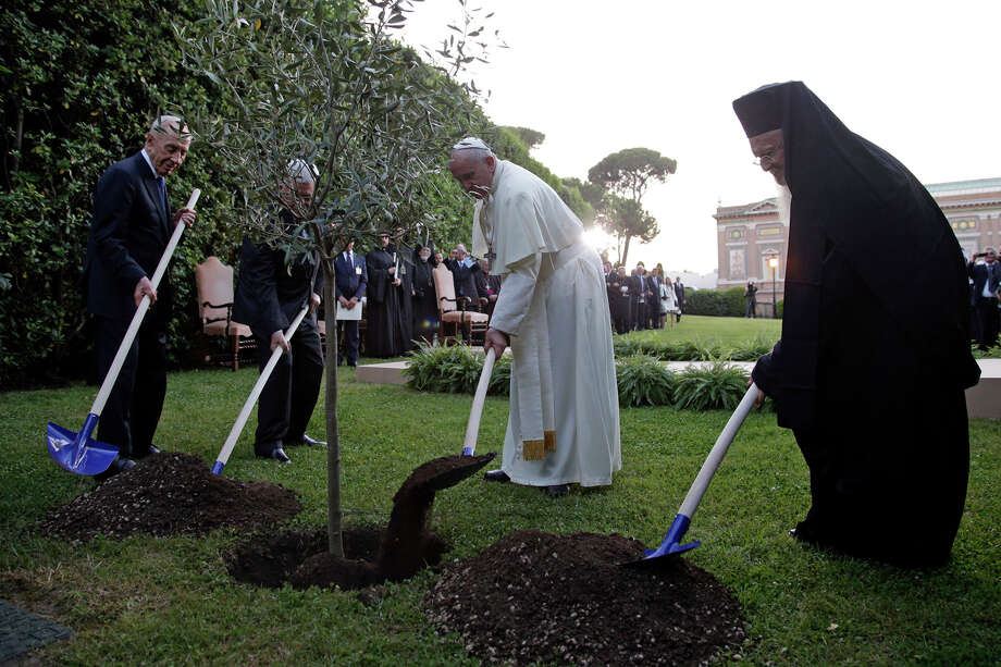 Pope Francis plants an olive tree with Israel's President Shimon Peres, left, Palestinian President Mahmoud Abbas, second from left, and Ecumenical Patriarch Bartholomew I, right, in a sign of peace during an evening of peace prayers in the Vatican gardens, Sunday, June 8, 2014. Pope Francis waded head-first into Mideast peace-making Sunday, welcoming the Israeli and Palestinian presidents to the Vatican for an evening of peace prayers just weeks after the last round of U.S.-sponsored negotiations collapsed. Photo: Max Rossi, AP / REUTERS