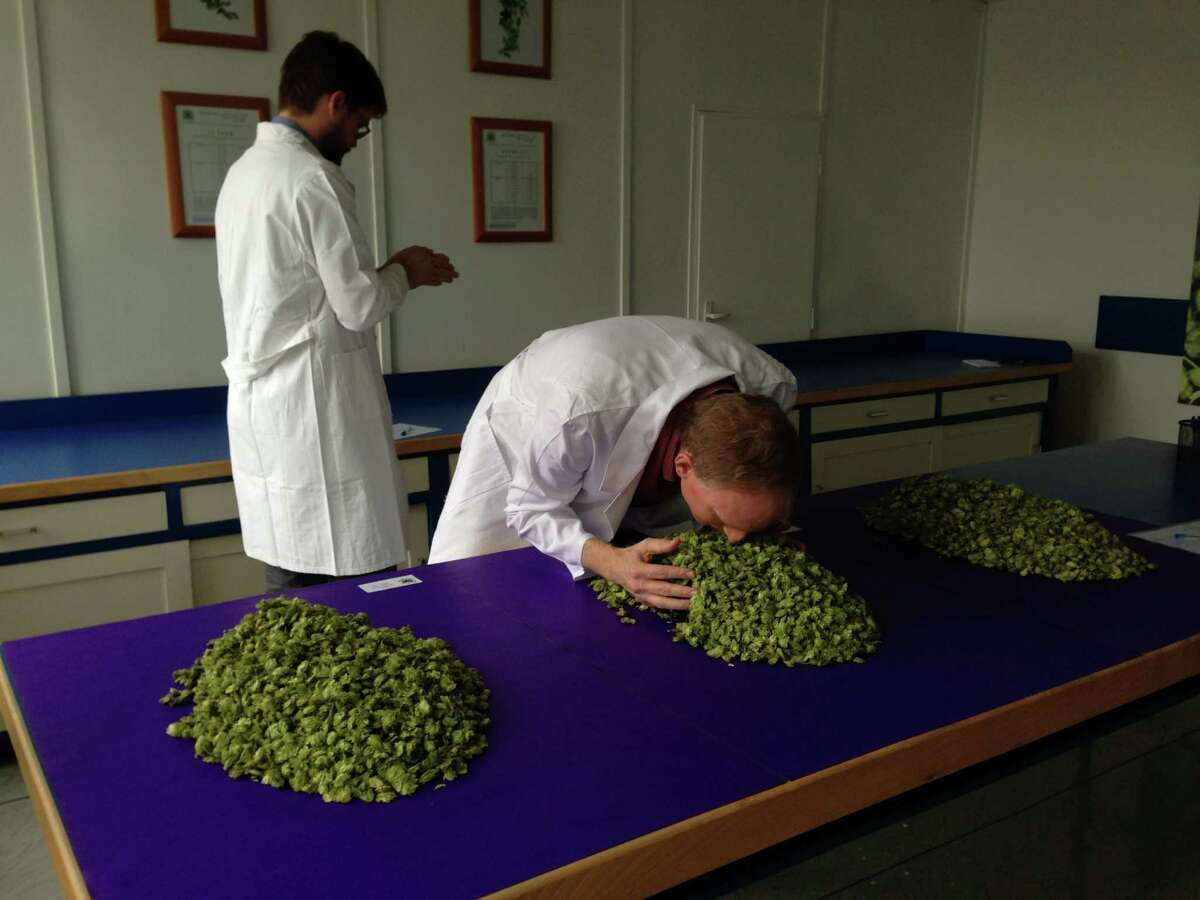 Saint Arnold Brewing Co. founder Brock Wagner leans in to smell hops, an ingredient essential to making beer, during a buying trip to Žatec, Czech Republic, with brewer Stephen Rawlings last October.