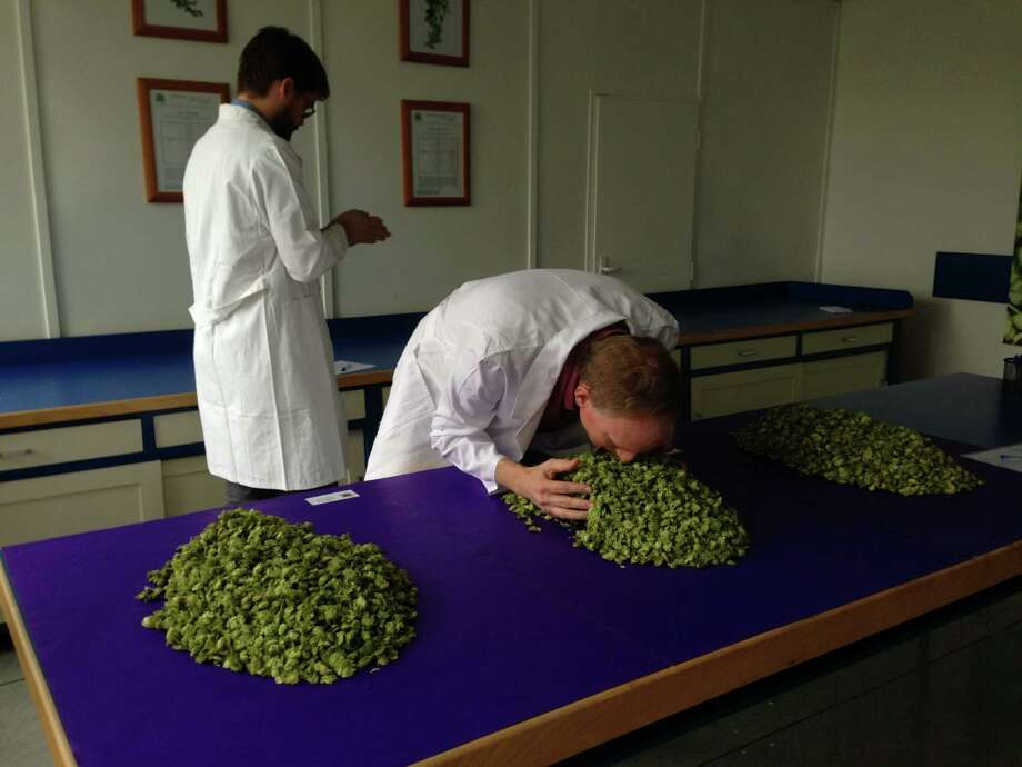 Saint Arnold Brewing Co. founder Brock Wagner leans in to smell hops, an ingredient essential to making beer, during a buying trip to Žatec, Czech Republic, with brewer Stephen Rawlings last October. Photo: Ronnie Crocker