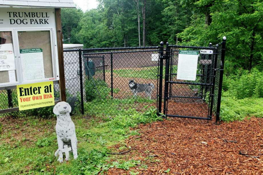 The Trumbull dog park in Indian Ledge is in danger of closing on July 1.  The nonprofit, TDOG, that took care of it has dissolved.  Monday, June 9, 2014 Photo: BK Angeletti, B.K. Angeletti / Connecticut Post freelance B.K. Angeletti