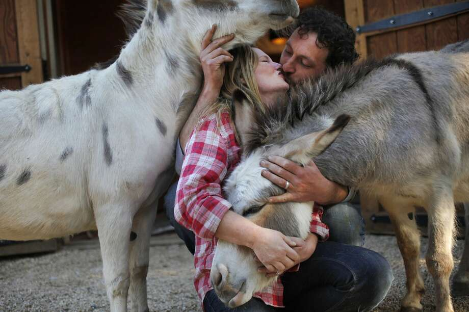 Heather Gillette, 44, and her husband Christopher Carstens, 34, pictured with miniature donkeys Large Marge, left, and Penelope May 22, 2014 in  front of their home in Woodside, Calif. The couple bought the land in 2006 and built the barn with horse stables with the intent of living in the upstairs space. Over the years, though, Heather took over the downstairs area. Sometimes animals from their land wander in and out of their home, including ducks, a chicken, three dogs, cats and the occasional horse. Photo: Leah Millis, The Chronicle