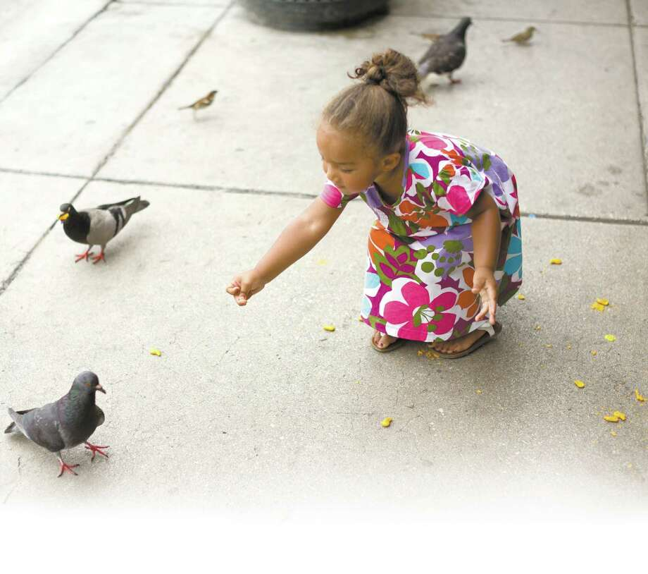A photo of Oillieanna Scott feeding pigeons is among more than 500 pictures taken by Michael Cirlos for his Humans of San Antonio project.