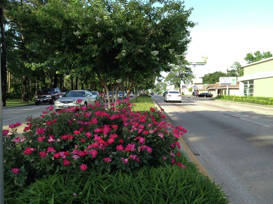 Plants and trees grace a median in the middle of FM 1960 near the Northgate subdivision.  Photo: Howard Decker