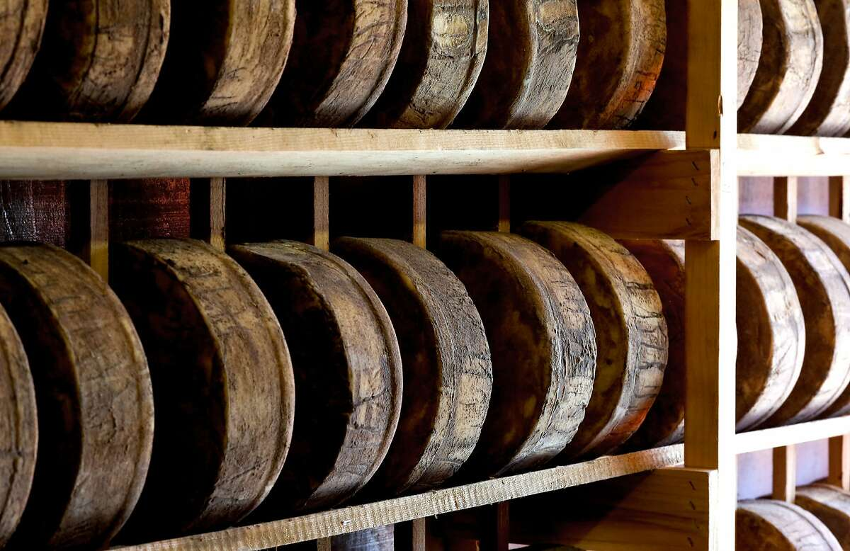 Rounds of Mezzo Secco Dry Monterey Jack are aged six to seven months on wooden racks at the Vella Cheese Co. in Sonoma, Calif. as seen on Tuesday June 10, 2014. The FDA has just issued a statement saying that aging cheeses on wooden boards is