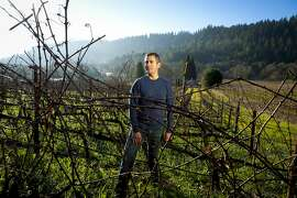 Tadeo Borchardt winemaker at Neyers Vineyards stands with his Cabernet Sauvignon vines at the Neyers Ranch in Conn Valley near St. Helena, Calif., on Wednesday, Jan. 16, 2013.