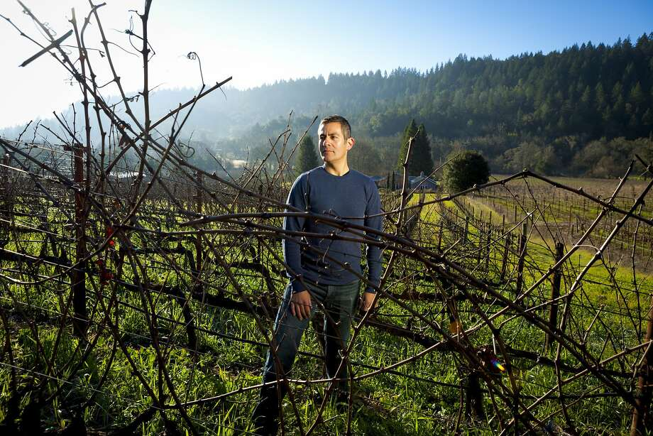 Winemaker Tadeo Borchardt in the Neyers Ranch in Conn Valley, the source of one of the 2011 vintage's great successes in Cabernet. Photo: Scott R. Kline, Special To The Chronicle