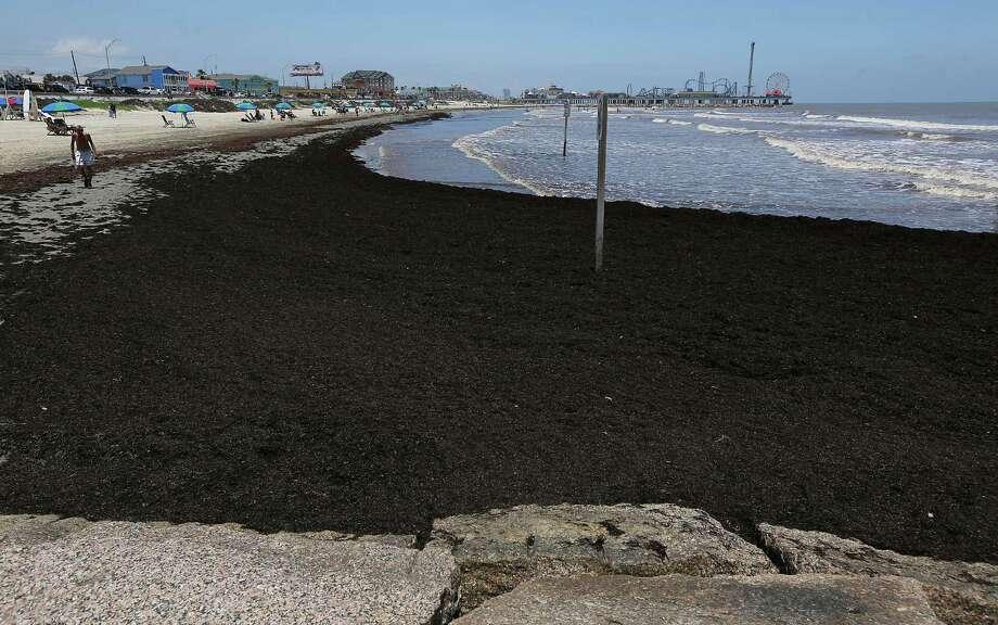 The beach along Galveston's Seawall Boulevard. Photo: James Nielsen, Staff / © 2014  Houston Chronicle