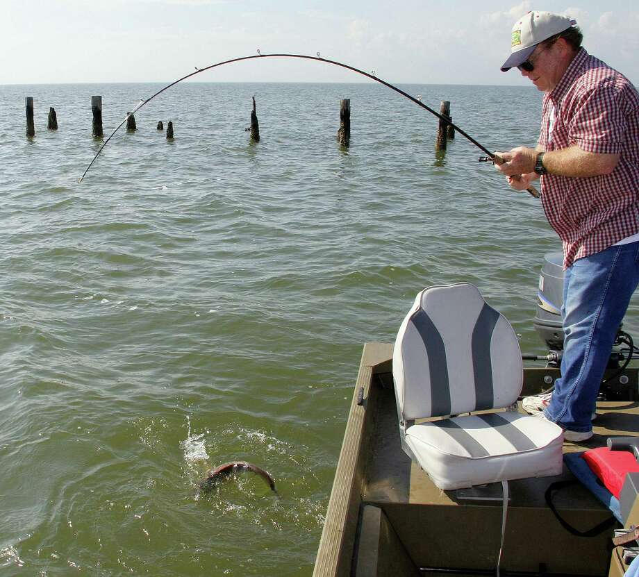 With research indicating redfish populations continue at or near record highs in upper-coast bays, Texas' saltwater anglers should enjoy another great summer of fishing for the popular inshore gamefish.