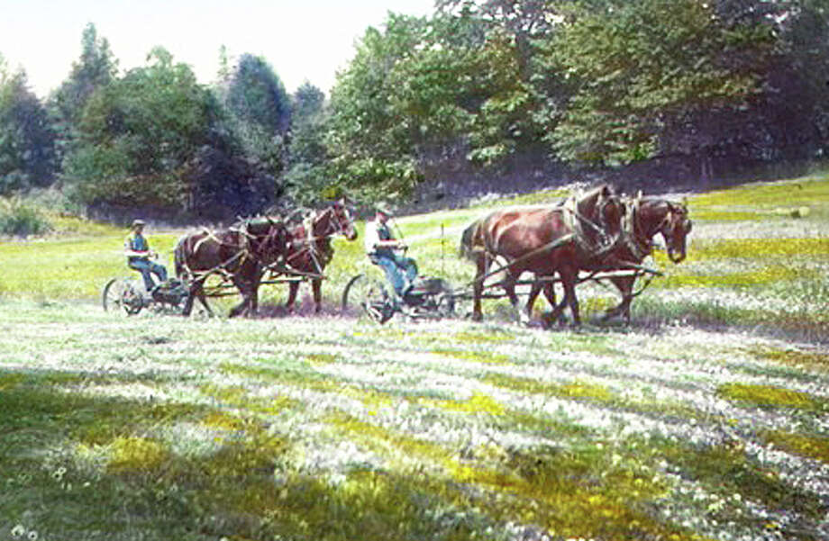 Farms in Fairfield were in decline by 1930 when 165 farms still existed, down from 215 just ten years before. This photo of two men driving double horses at Dr. Dewitt's farm was taken by Mabel Osgood Wright, who chronicled much of Fairfield life with her camera. Courtesy: Fairfield Museum and History Center Photo: Contributed Photo / Fairfield Citizen
