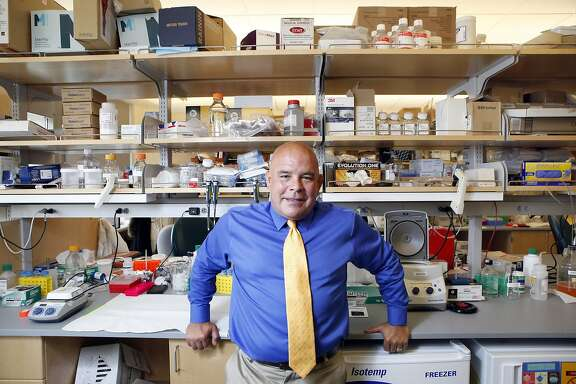 Dr. Esteban Gonzales Burchard, a UCSF specialist in genetic medicine who has led a major computer project to unravel the genes that link modern Mexican-Americans with their ancestors, poses for a portrait in his lab in San Francisco, CA, Thursday June 12, 2014.