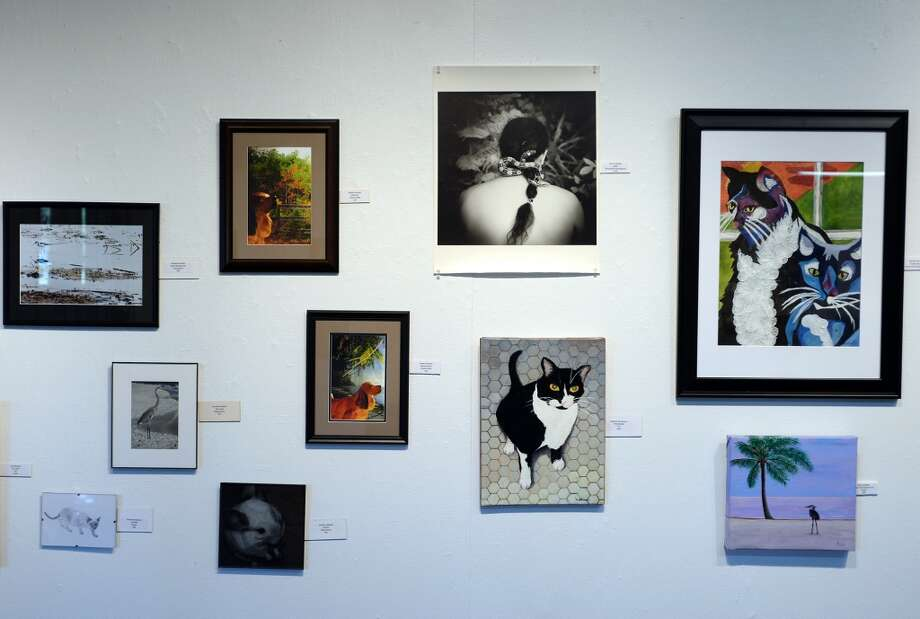 Art covers the walls of the Beaumont Art League on Thursday afternoon. The Beaumont Art League arranged artwork Thursday in preparation for the Animal Art Show on June 15. The show is a partnership between the league and the Humane Society of Southeast Texas. Photo taken Thursday 6/5/14 Jake Daniels/@JakeD_in_SETX