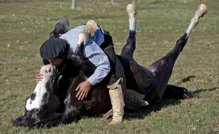 Um ... get a room? Self-taught horse whisperer Martin Tata kisses his horse, Milonga, as he performs a demonstration for reporters on a ranch in San Antonio de Areco, Argentina. Without whips, shouts, jabs or even a firm hand on the reins, Tatta coaxes Milonga to join him in acrobatic feats. Photo: Natacha Pisarenko, Associated Press