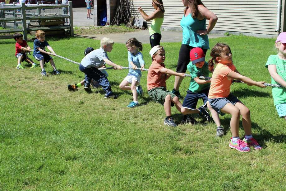 Royle School kindergarteners give it their all during the tug-of-war at the recent field day. Photo: Contributed Photo, Contributed / Darien News