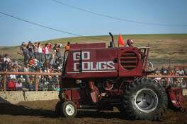 """The """"Go Cougs"""" combine readies for an attack during the 27th annual Lind Lions Club Combine Demolition Derby in Adams County. During the event drivers smash the multi-ton machines against competitors until one machine remains. The teams compete for a $10,000 purse during the annual Lions Club fundraiser. Photographed on Saturday, June 14, 2014."""