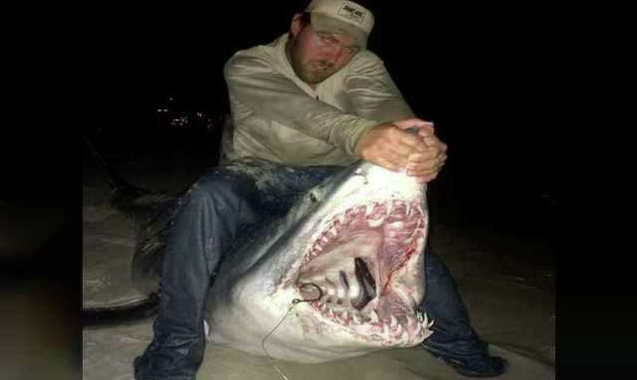 Joey Polk missed out on the record books with his catch because he and his crew did not return the shark to the wild.  Instead feeding it to 200 people at a community feast.  The international land based shark fishing association requires sharks be released. Photo: Joey Polk