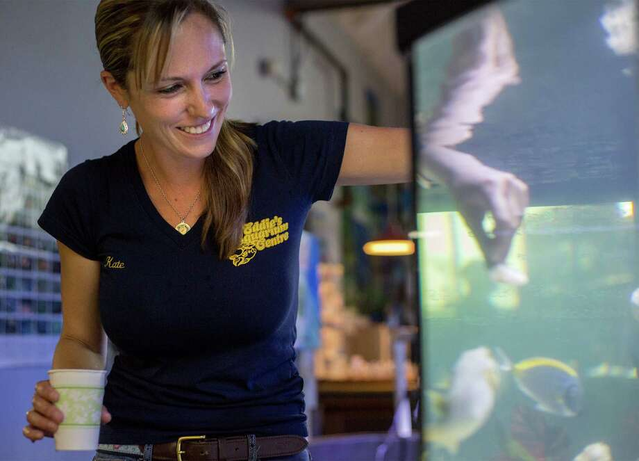 Kate Veitch feeds various saltwater fish Wednesday, June 11, 2014, as part of her daily routine as manager of Eddie's Aquarium Centre in Cohoes, N.Y.  (Tom Brenner/ Special to the Times Union) Photo: Tom Brenner / ©Tom Brenner/ Albany Times Union
