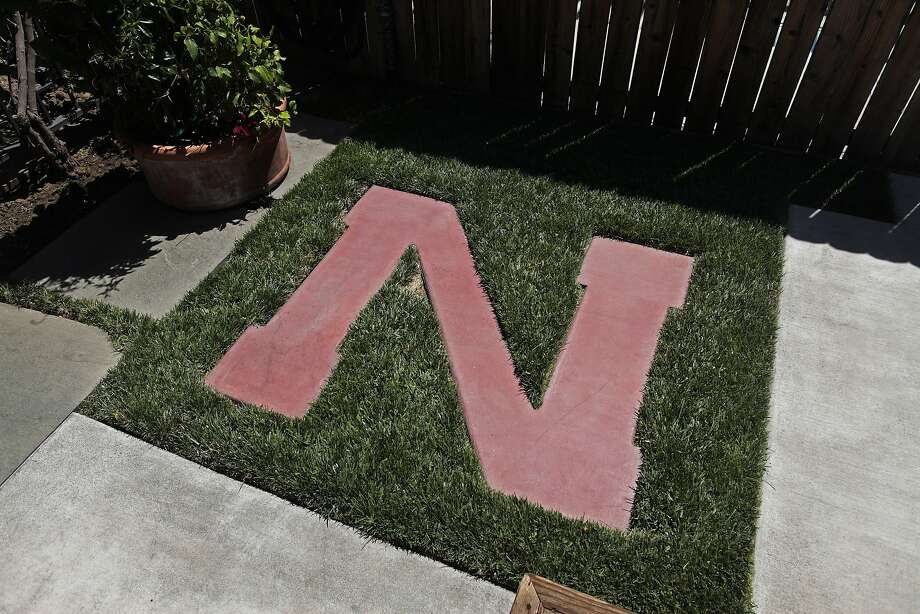 """The Nebraska Cornhuskers' """"N"""" is seen in John Schofield's backyard in Dublin, Calif. on Friday, June 13, 2014. It is one of the only patches of grass being kept alive on his property, the rest are being left to dry out. The dry summer has prompted Californians to save water any way they can. Photo: James Tensuan, The Chronicle"""