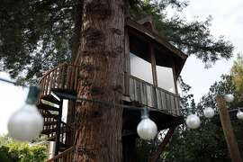 A treehouse built on commission by artist Jay Nelson for Daria Joseph is seen nestled between a stand of trees in her backyard in Marin, CA, Friday May 30, 2014.
