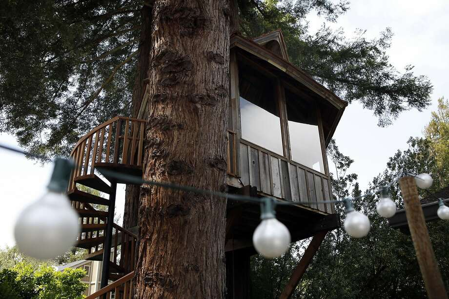 A treehouse built on commission by artist Jay Nelson for Daria Joseph is seen nestled between a stand of trees in her backyard in Marin County. Photo: Michael Short, The Chronicle