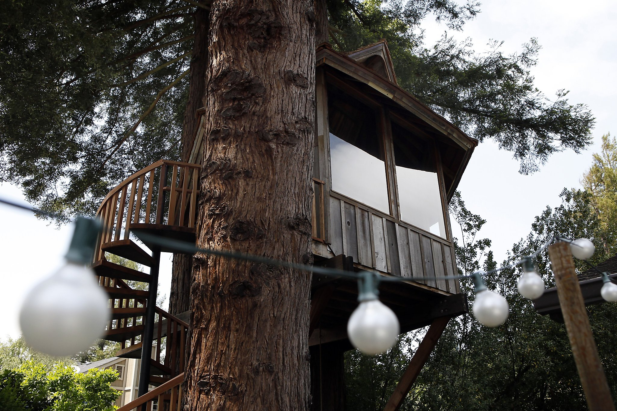 S.F.'s Jay Nelson builds tree houses as works of art - SFGate on tree house houses, easy tree house designs, tree house ladder designs, tree house platform, tree house fencing, tree house plans, tree house steps, tree house kits, tree house layouts, tree house handrails, tree house stairs systems, simple treehouse designs, tree house interior designs, tree house construction details, tree houses for adults, inside treehouse designs, new staircase designs, treehouse plans and designs, tree house architecture, tree staircase,