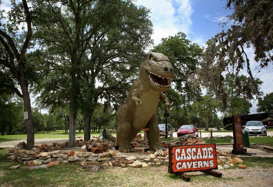 A model Tyrannosaurus rex stands in front of the parking lot at Cascade Caverns in Boerne, Texas, on Tuesday, June 17, 2014. Photo: Timothy Tai, San Antonio Express-News / © 2014 San Antonio Express-News