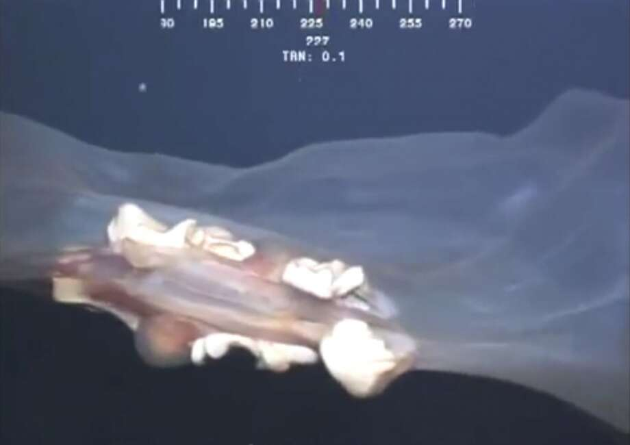 A strange sea creature, filmed about 5,000 feet below the surface of the Gulf of Mexico by an oil-rig camera, is thought to be a rarely seen jelly fish that's more at home near the Antarctic. The creature briefly comes into frame before disappearing. But just when the camera operator things it has disappeared for good, the creatures comes back for a thorough visit.