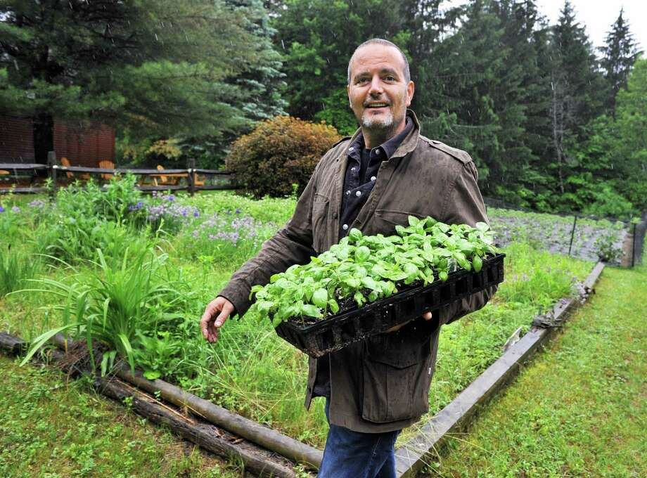 Restaurateur David Zecchini carries a tray of basil plants out to the gardens at his DZ Farm Friday June 13, 2014, in Galway, NY.   (John Carl D'Annibale / Times Union) Photo: John Carl D'Annibale / 00027345A