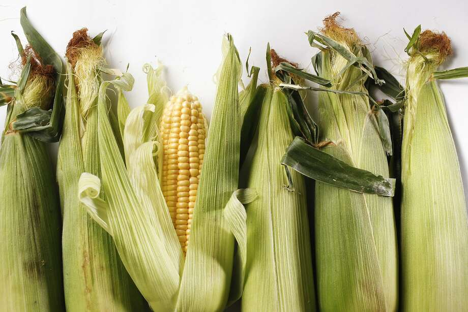 Corn as seen in San Francisco, California on Wednesday June 11, 2014. Photo: Craig Lee, Special To The Chronicle