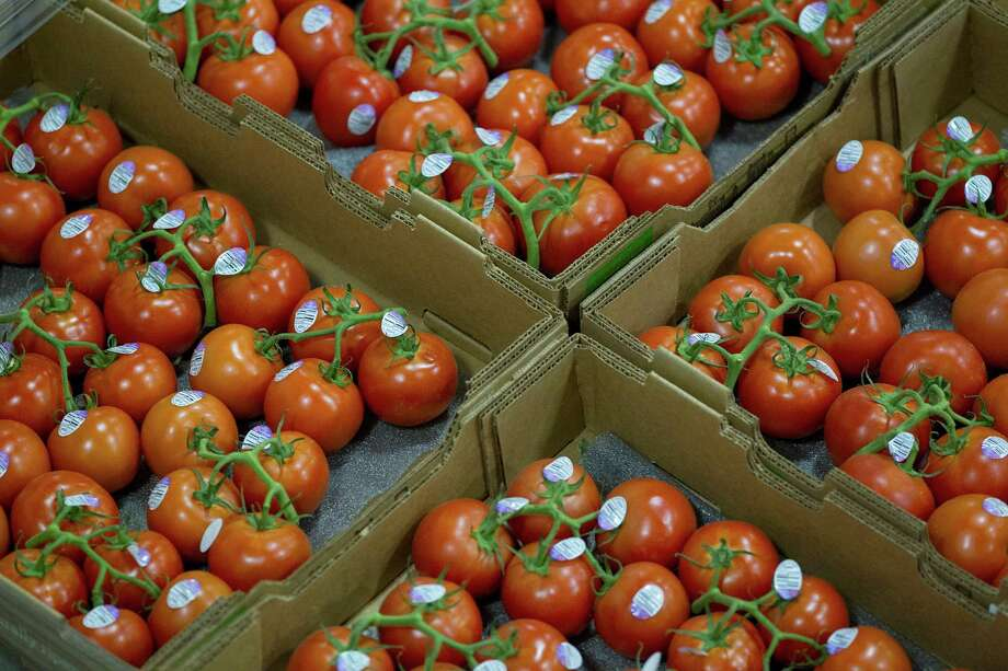 Tomatoes at Grocers Supply Company in its near-west warehouse and distribution facility. Grocers Supply  struck a deal with C&S Wholesale Grocers to sell its wholesale distribution business. ( Johnny Hanson / Houston Chronicle ) Photo: Johnny Hanson / © 2014  Houston Chronicle