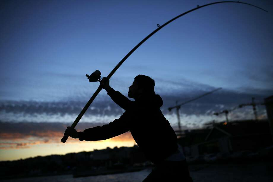 Tiago Santos throws his line from the Tagus riverbank while fishing at sunset in Lisbon, Thursday, June 19, 2014. (AP Photo/Francisco Seco) Photo: Francisco Seco, Associated Press