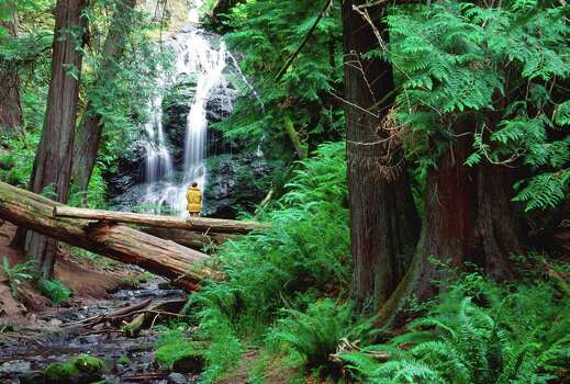 The Cascade Falls Trail in Moran State Park on Orcas Island passes through lush forest and yields beautiful waterfall views. Photo: Mark Gardner