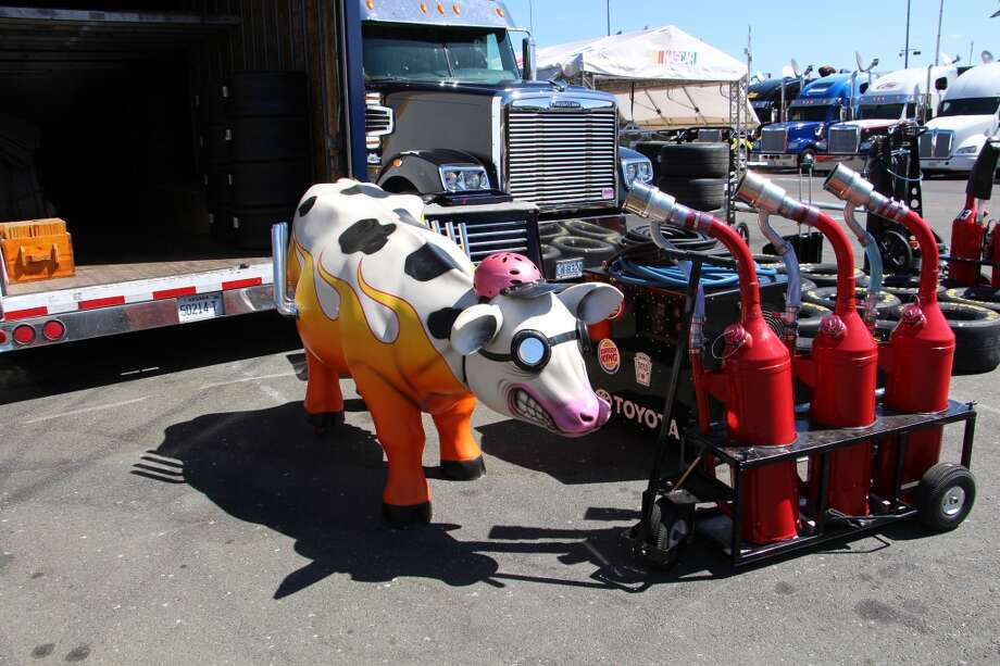 It was not clear whether the cow had an integral role in the day's activities.