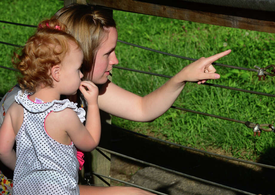 Kara Goodrum, of Bridgeport, points out the Siberian Tiger to her daughter Lena, 2, during the 7th Annual Survivor Safari was held for cancer survivors and their families at Beardsley Zoo in Bridgeport, Conn. on Saturday June 21, 2014. The event, which is in its seventh year, was hosted by Bridgeport Hospital's Norma F. Pfriem Cancer Institute. Photo: Christian Abraham / Connecticut Post