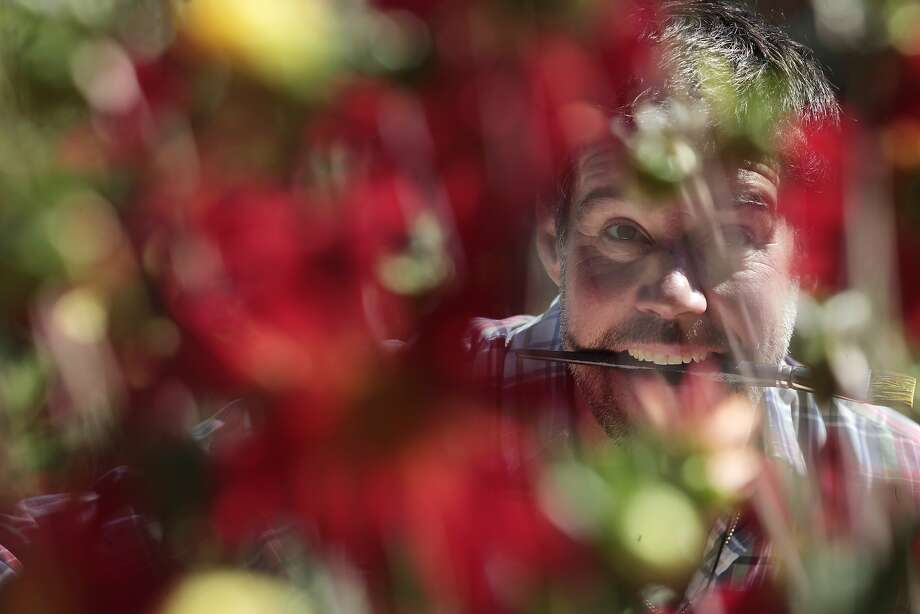Painter Kevin Woodson only paints his flowers in their natural setting, like at the Lakeside Garden Center in Oakland. Photo: James Tensuan, The Chronicle