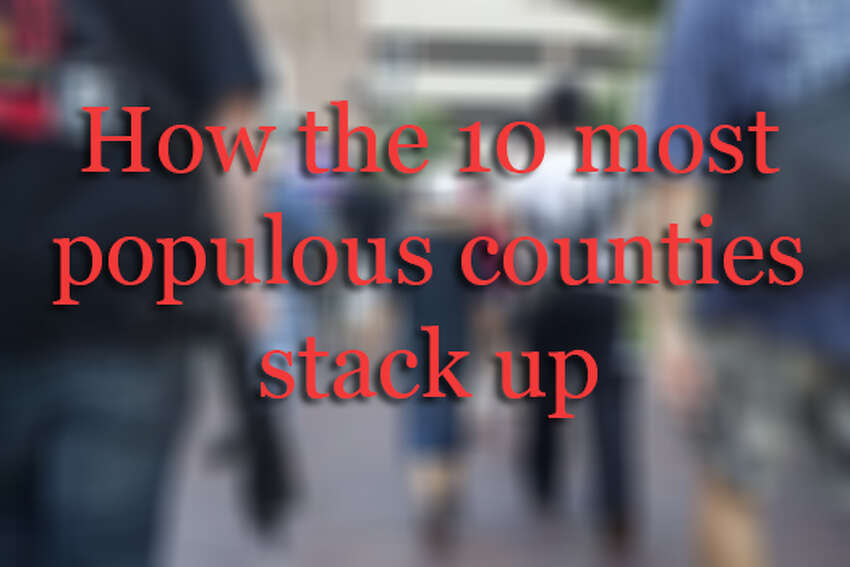 Museum, library and gun retailer counts for the 10 most populous counties.