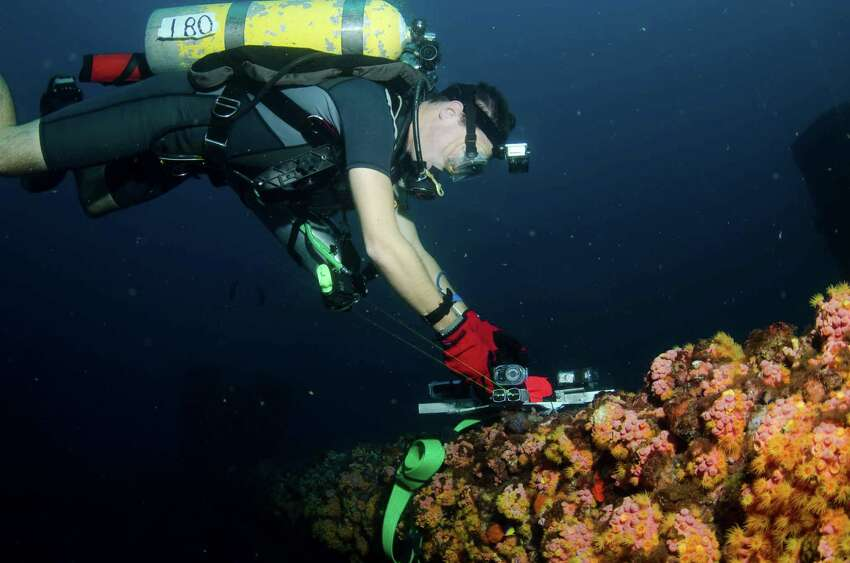 Texas Parks and Wildlife Department divers check out wildlife in artificial reefs.