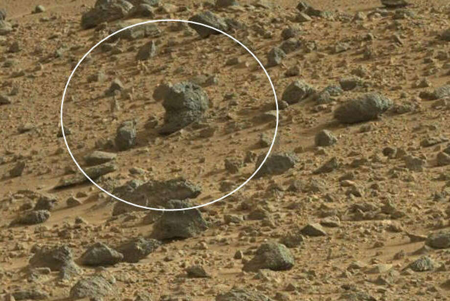 A cat on Mars?(zoomed)Now check out these other so-called Mars creatures spotted on MASA satellite images. Photo: NASA Rover Image
