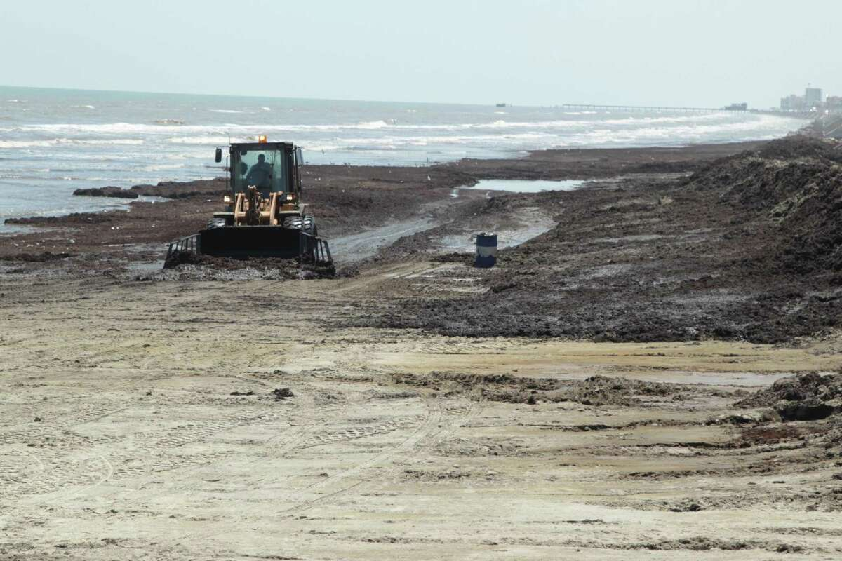 Tourists are grumbling and cleanup crews are scrambling as the seaweed problem continues to grow on Galveston beaches. Officials called it a