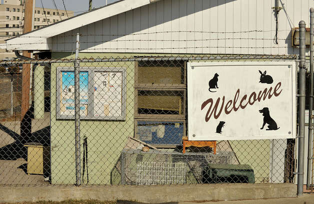 A welcome sign hangs at the entrance to the animal care and control shelter in Stamford, Conn., on Monday, March 17, 2014. Photo: Jason Rearick / Stamford Advocate